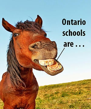 Thinking about building in Ontario how are the schools