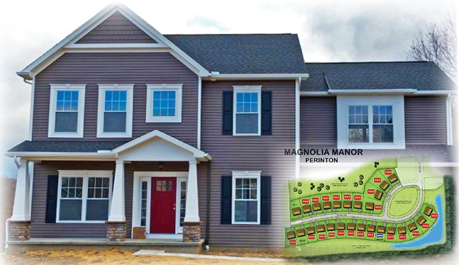 EllingtonMagnolia