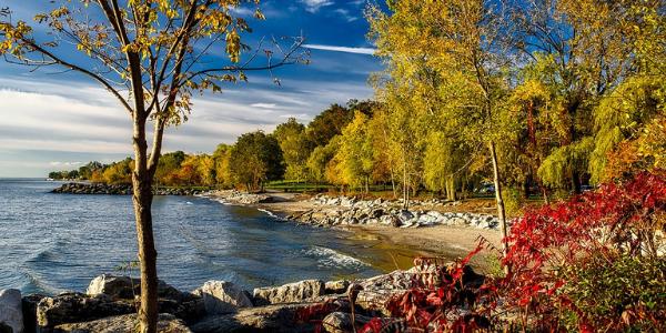 Ontario NY in Rochester