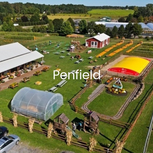 Gerber-Homes-Penfield